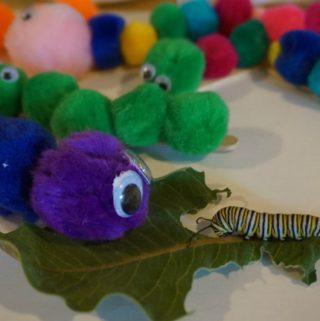 Caterpillar Pom Poms Toddler Craft