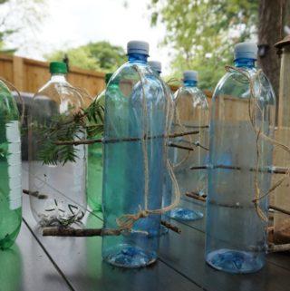 Plastic Bottle Recycle Bird Feeder Craft