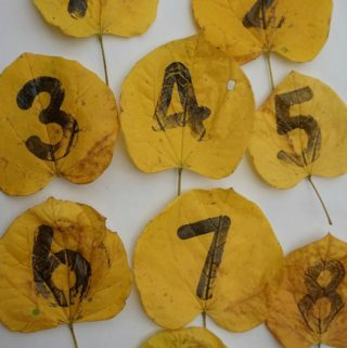 Fall Kids Activity Stamping Numbers on Leaves for Fall Table